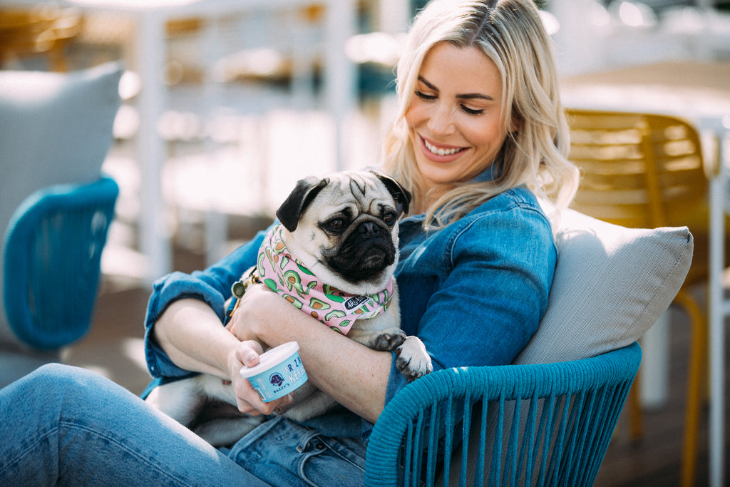 The Best Pet-Friendly Restaurants in Manhattan Beach