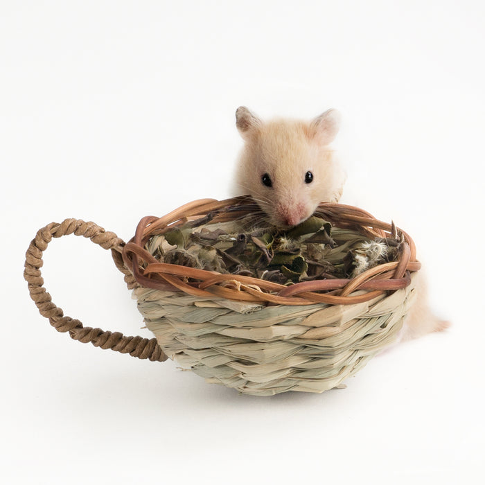Niteangel Hamster Timothy Food Cup Teacup Chew Toy