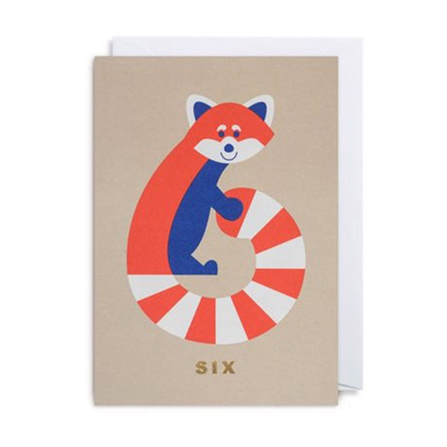 6th BIRTHDAY/ Number Six Racoon