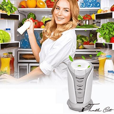 Ionic Fridge Air Purifier
