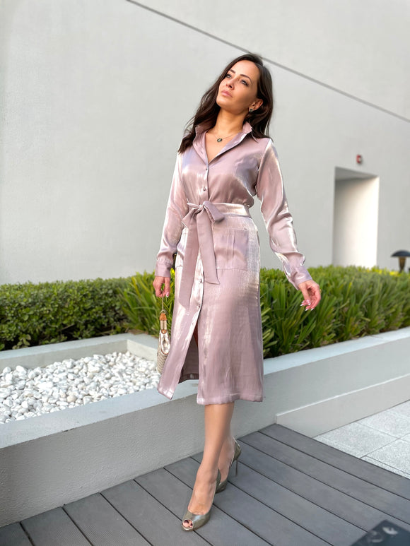 Shimmery Shirt Dress