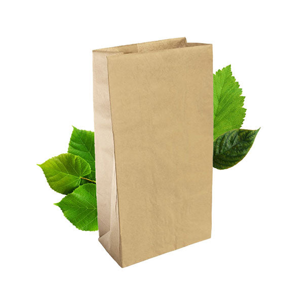 SO 16 Brown Bag (250 Per Pack)
