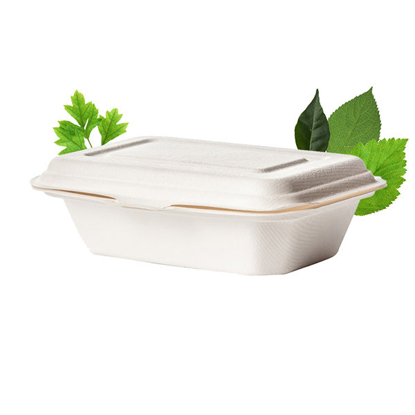 Plain 600ml Biodegradable Single Compartment Container - Bagasse (50 Per Pack)