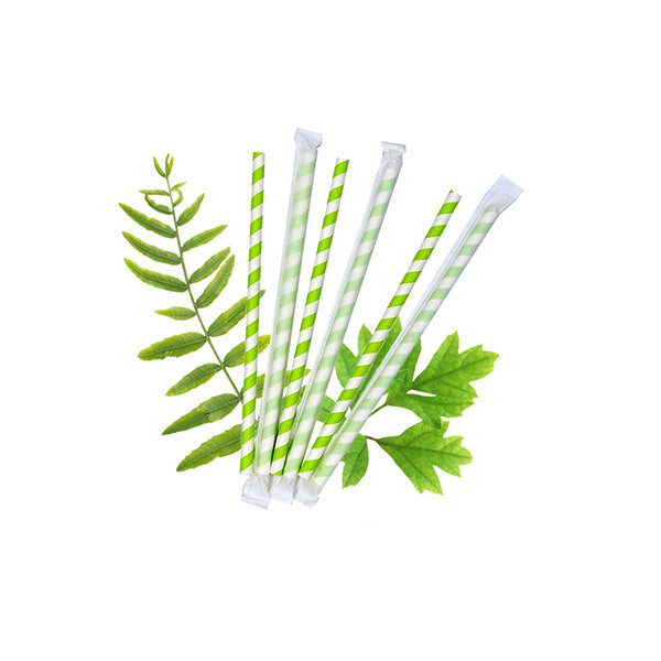 8mm Wrapped Compostable  Straw - Green and White Candy Stripe  (200 Per Pack)