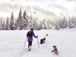 The Best Free Dog-Friendly Snowshoeing Trails to Do in the Sea-to-Sky Corridor This Winter