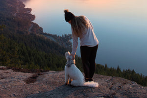 Ways to Enjoy the Sea-to-Sky this Fall with Your Dog