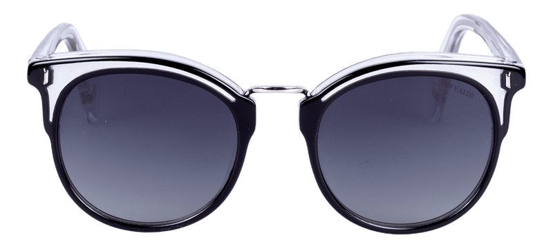 (DV0106) Sunglasses