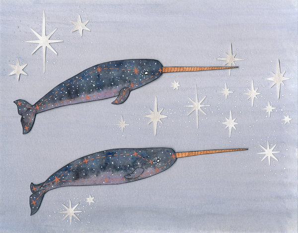 narwhal constellation