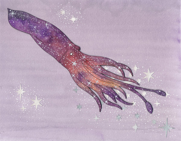 squid constellation