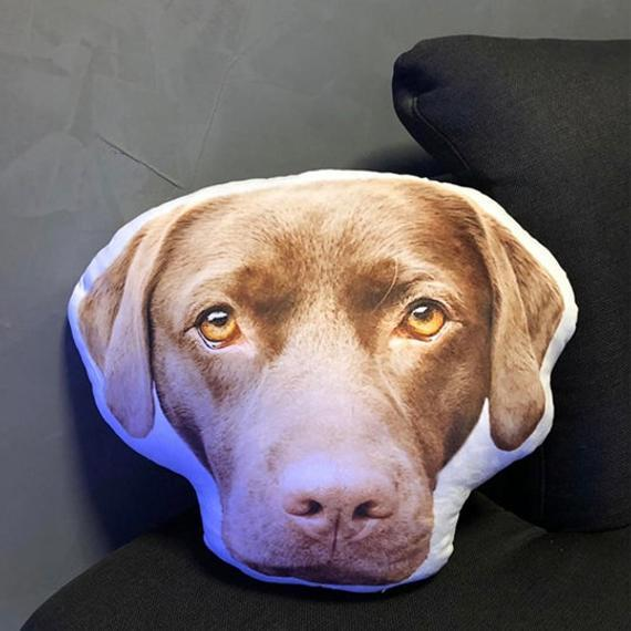 Custom Funny Dog Face Pillow