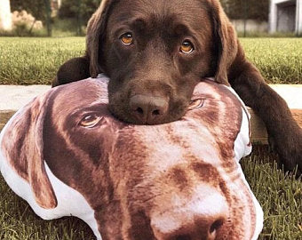 Custom Dog Face Pillow