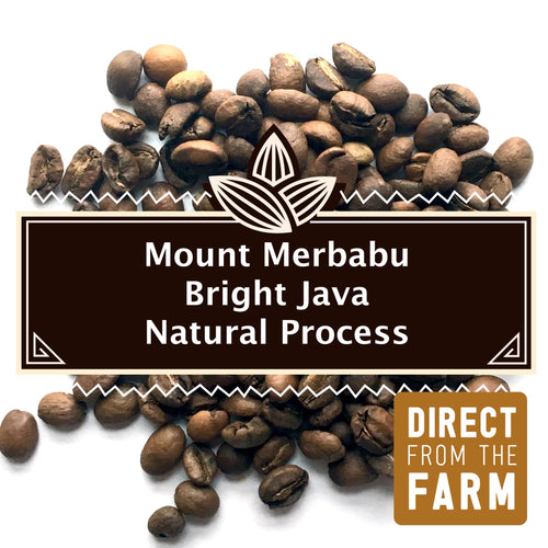 Mt. Merbabu Natural | Medium/Light Roast