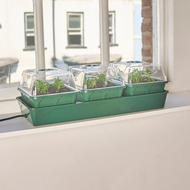 EarlyGrow 3-Bay Heated Windowsill Propagator