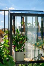 Juliana Balcony Greenhouse