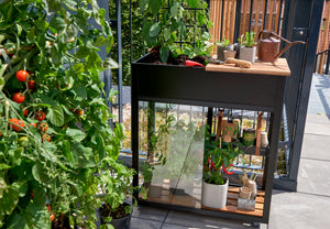 Juliana Vertical Greenhouse