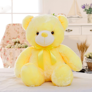 Light Up LED Teddy Bear