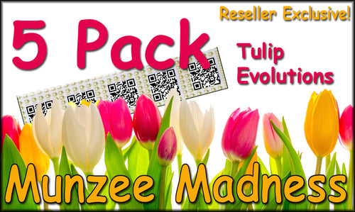 5-Pack Tulip Evolution Munzee Stickers