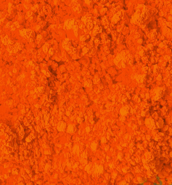 Neon Pigment - Orange Fanta - Sud Off! Soaps and Sundries