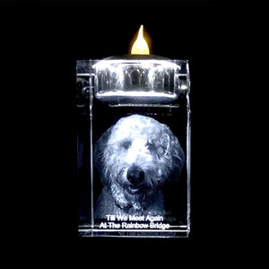 YOUR PET IN 3D INSIDE A SMALL CRYSTAL- CANDLE HOLDER