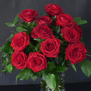 6 Best Red Naomi Roses With Mixed Foliages