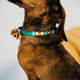 Small Tribal Print Pet Collar