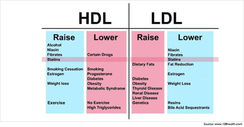 The differences between good and bad cholesterol