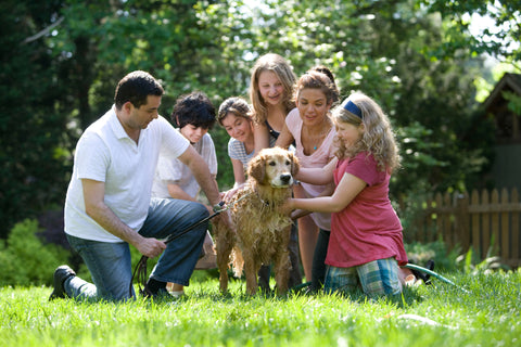 """Family pictures """"T is for Tame"""" haircare"""
