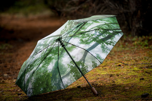 Misty Woods Umbrella - Small