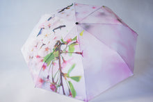 Load image into Gallery viewer, Cherry Blossom Umbrella