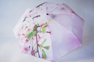Cherry Blossom Umbrella