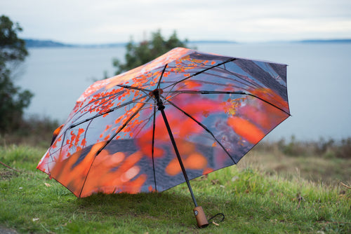 Fall Leaves Umbrella