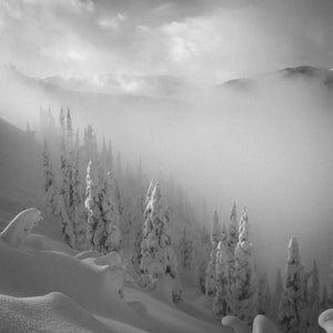 Hurricane Ridge, Olympic National Forest
