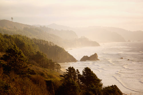 11x14 Mounted Color Photograph - Oregon Coastline