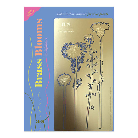 Brass Blooms Wildflowers, Botanical Decoration