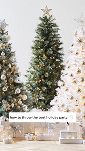 I'm Serious Clark! This is your Guide to Planning the Perfect Holiday Party!