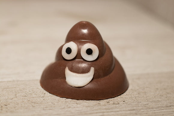 Poop Emoji Chocolate Peppermint Soap - Machado Family Farm