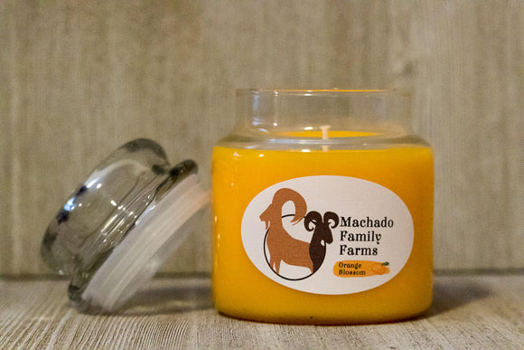 Orange Blossom 14oz Candle with Lid - Machado Family Farm