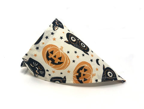 Black Magic Cat Bandana