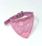 Paisley Collar Cat Bandanas (Blue, Green, Pink, & Red)