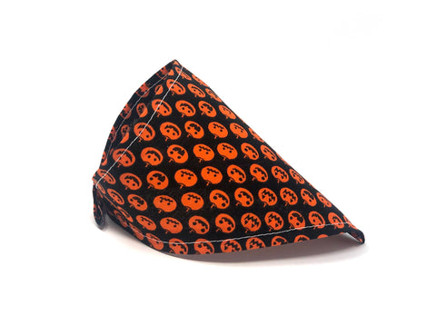 Pumpkin Patch Cat Bandana