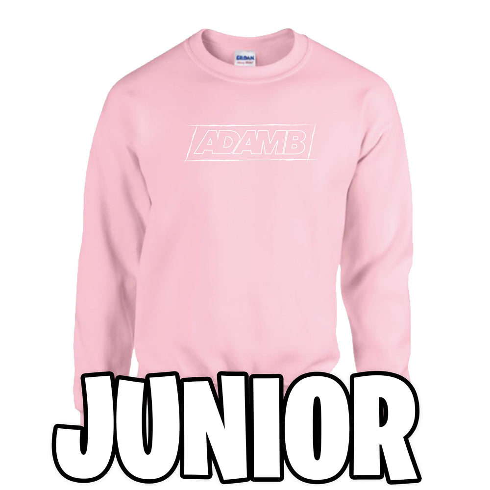 Adam B Junior Pink Sweatshirt