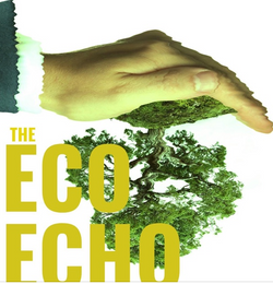 Eco Echo Interview