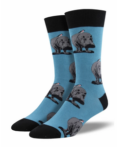 Hip Hipporay Socks