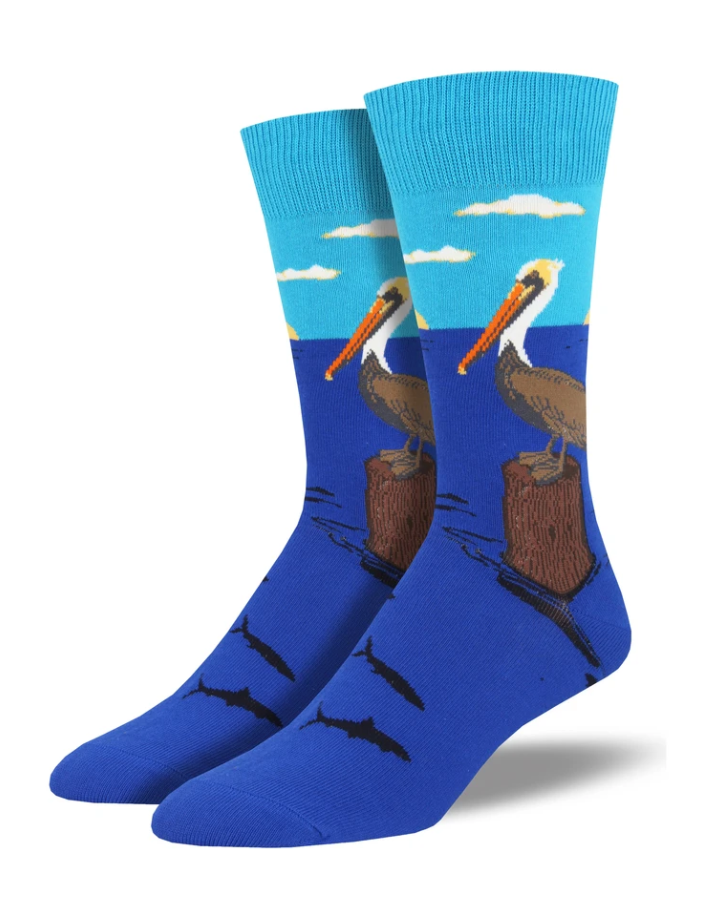 Bird's Eye View Socks