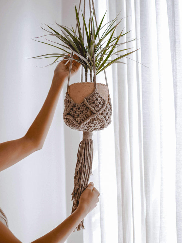 "Ceremonia plant hanger macramé ""darling"" - cafecito home decor Ceremonia"