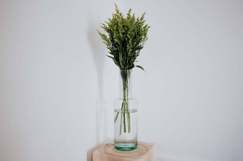 Newly Goods Doppio Vase Glass Newly Goods