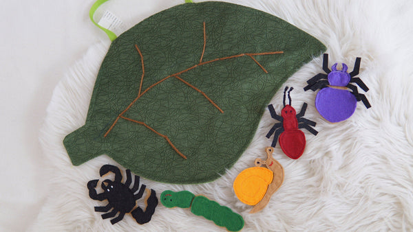 Zeki Learning Crawling Bugs Assembly Kit Zeki Learning
