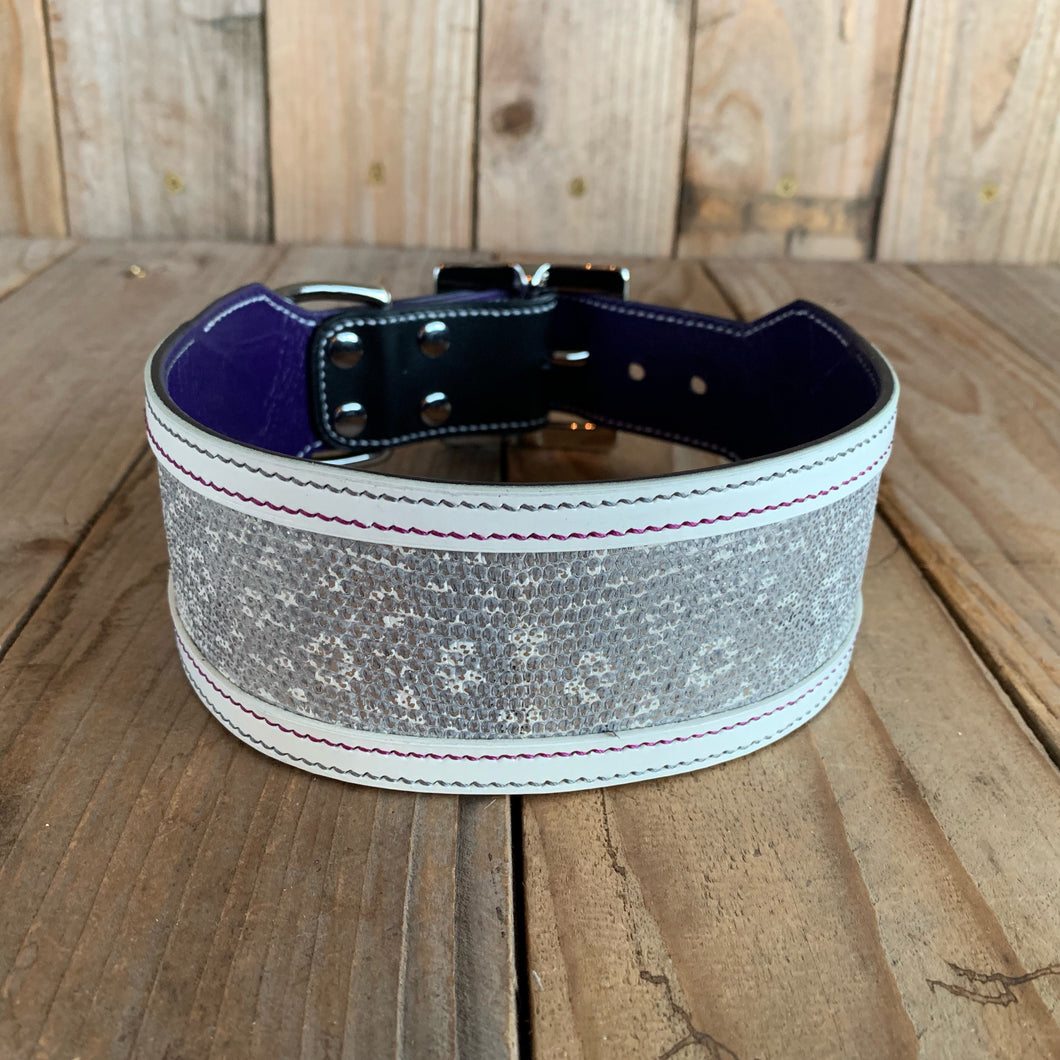 Silver | Ring Lizard Skin and Leather Dog Collar