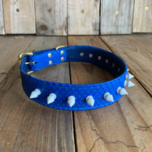 Blue | Spiked Python Skin Dog Collar with Kangaroo Leather Lining
