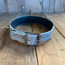 Silver Sparkle | Spiked Python Skin Dog Collar with Kangaroo Leather Lining